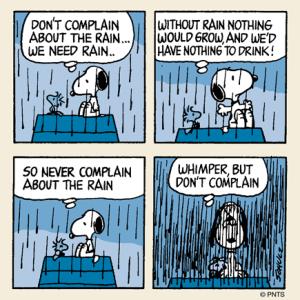 No complaint!