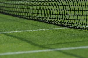 Wimbledon2013-grass
