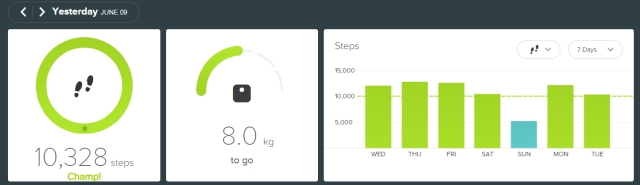 FITBIT - 20150609