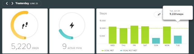 fitbit - 20150623