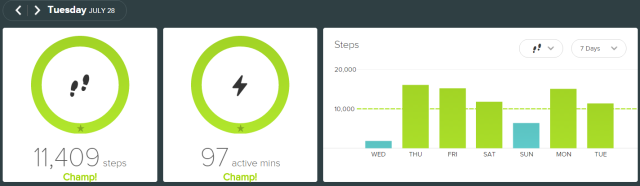 fitbit - 2015-07-28