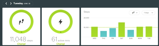 fitbit - 20150630