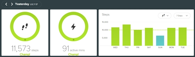 fitbit - 20150707