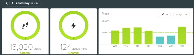fitbit - 20150714