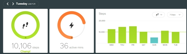 fitbit - 20150721