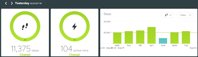 fitbit - 2010804
