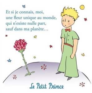 magnet-the-little-prince-la-rose-du-petit-prince